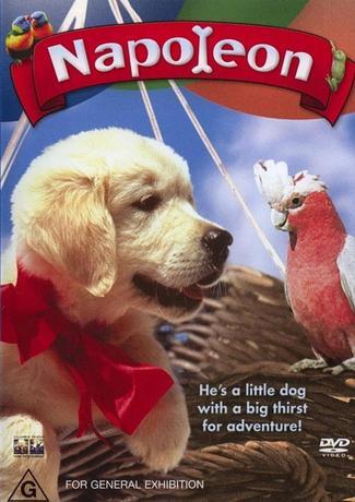 Наполеон / Napoleon (1995) DVDRip