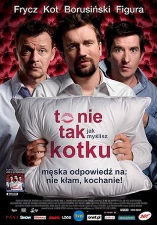 Это не то, что ты думаешь, дорогая / To nie tak jak myslisz, kotku (2008) DVDRip