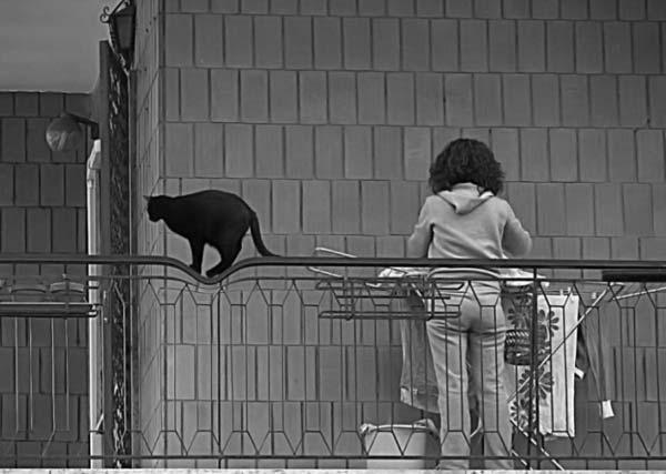 Позитивная фотоподборка (07-12-2008) 70 фото