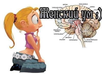 Женский ум :)