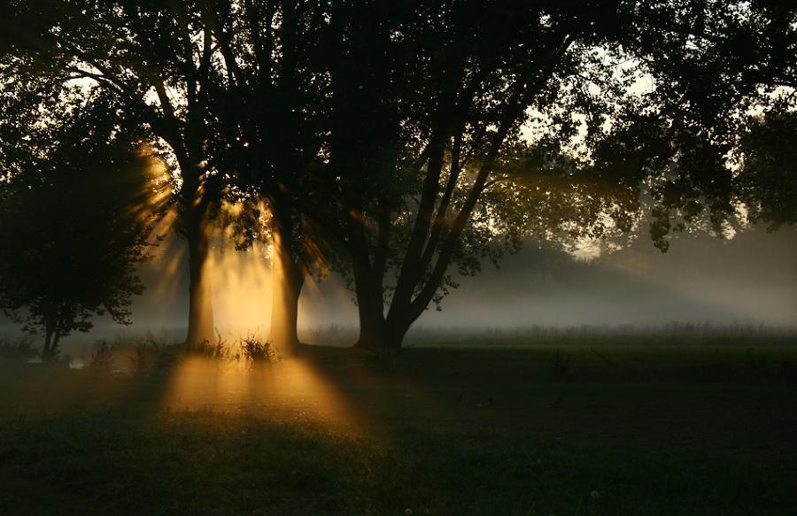 Фотоальбом Природы красота