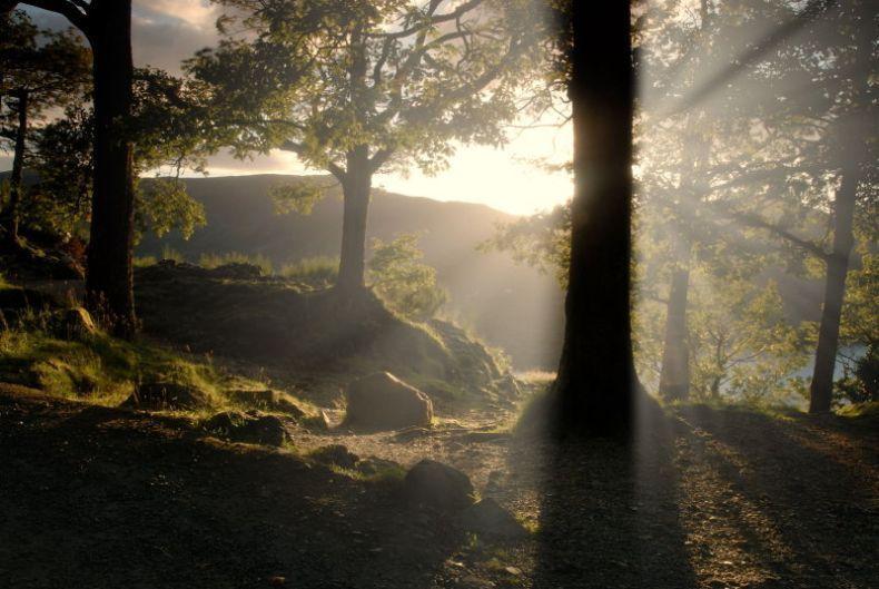 Природа (19-10-2009)