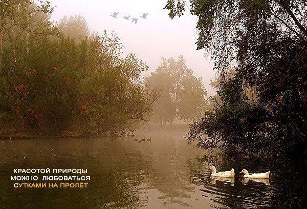 Картинки со смыслом (17-11-2008) 26 фото