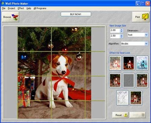 Wall Photo Maker 3.4