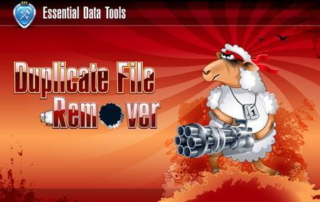 Duplicate File Remover v2.2 build 415