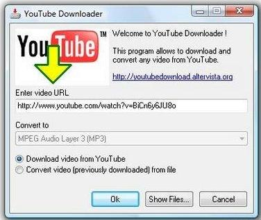 YouTube Music Downloader v3.1