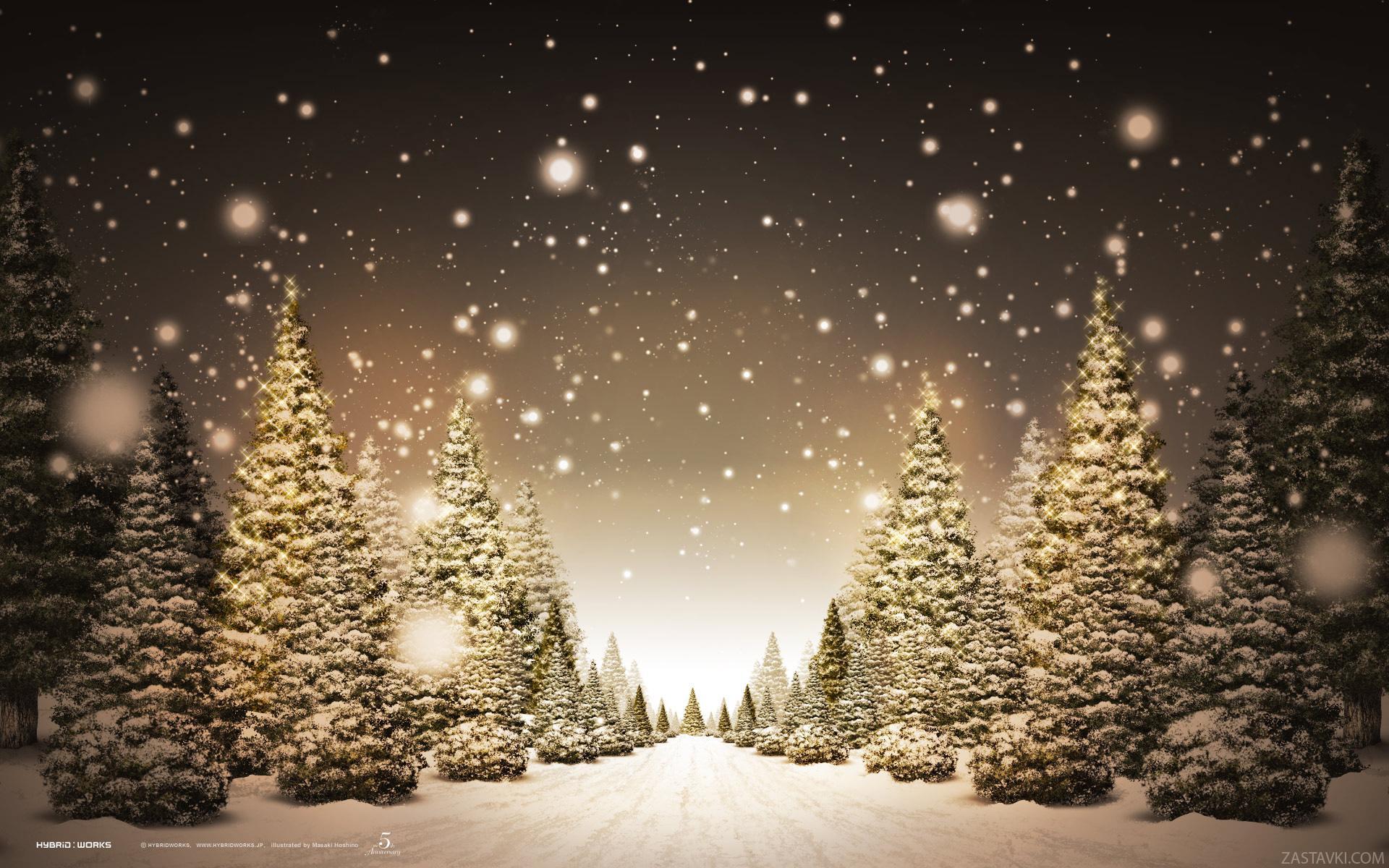 Картинки новогодних причесом на 2009 год