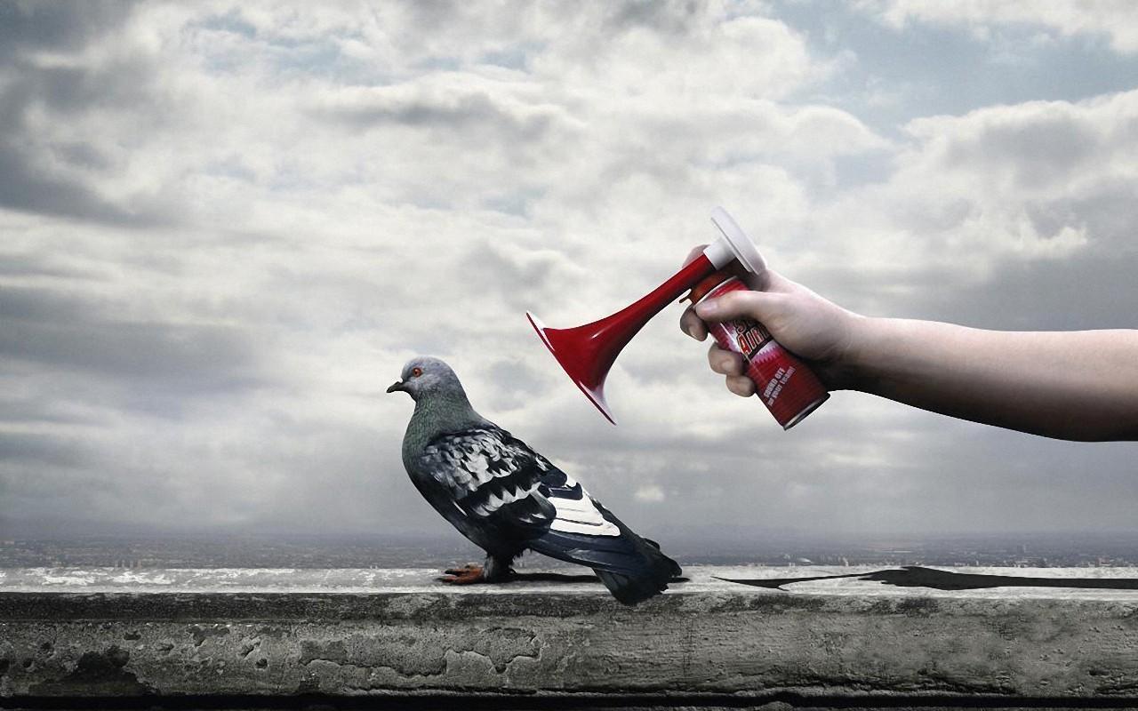 Креативные Животные. Обои