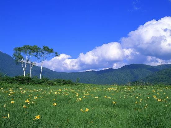 Подборка красивых обоев под названием Nature of Japan Pack в HQ качестве